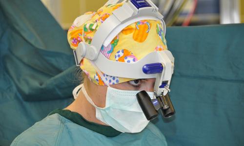 chirurgische Eingriffe Dr. Selina Buchner